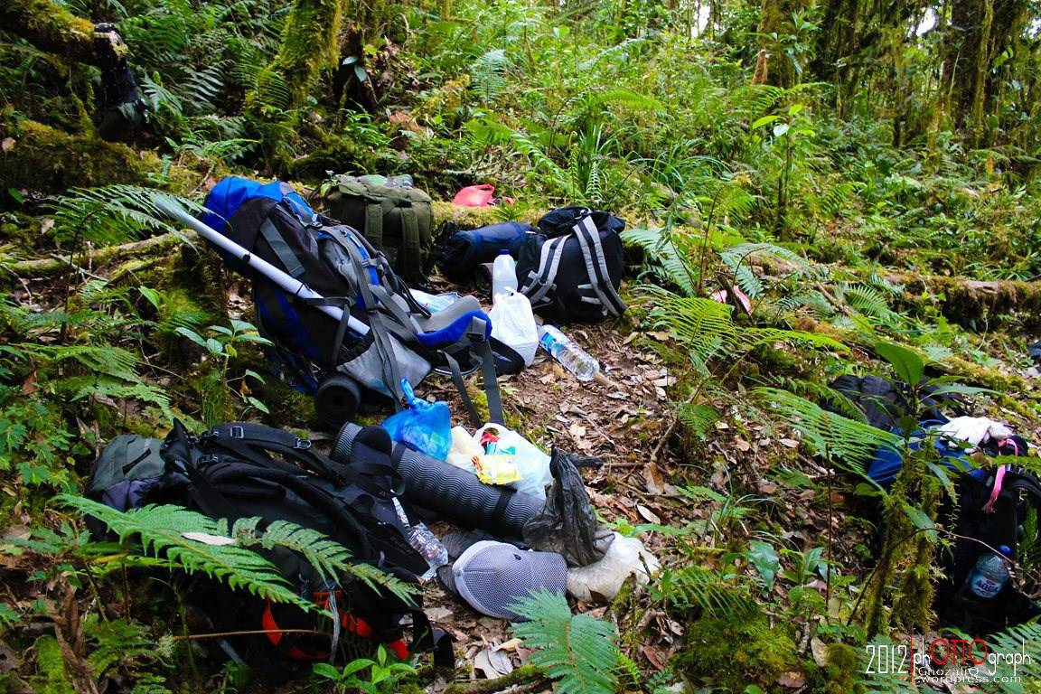 Gunung Kemiri (3315 mdpl), mencicipi pesona Taman Nasional Gunung